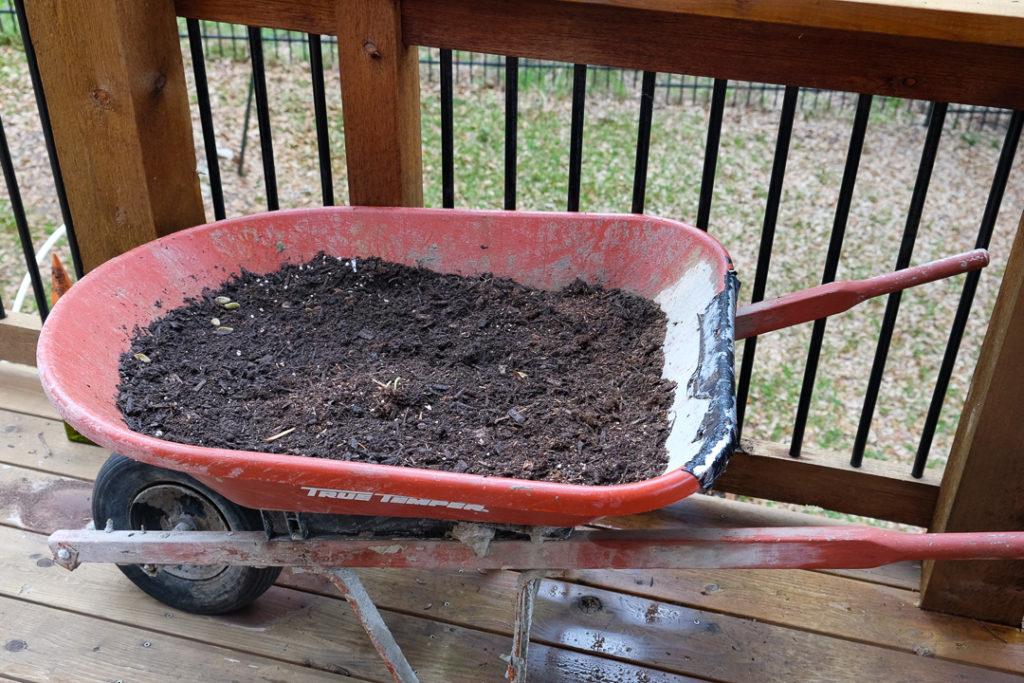 レタスを栽培予定