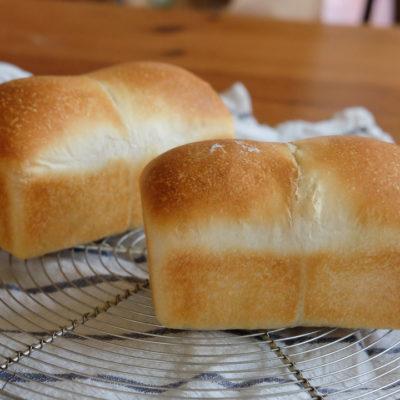 自家製酵母のふんわりミニ食パン、とミニパウンド型のおはなし