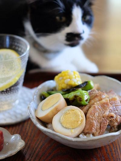 豚の角煮丼☀夏バージョン – 手作りの器に盛ってみました♪