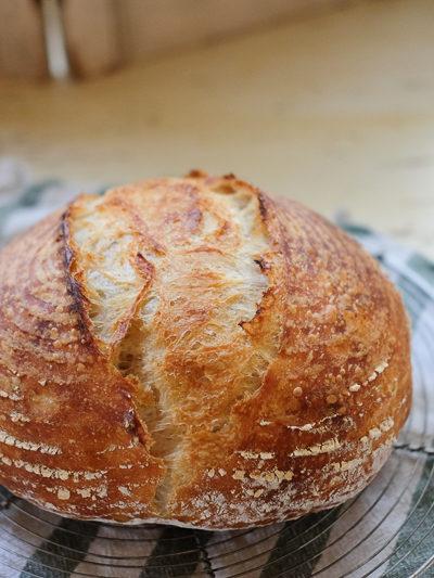 【パン】久しぶりに焼いたサワードゥブレッドの出来のよさに.. うっとり。