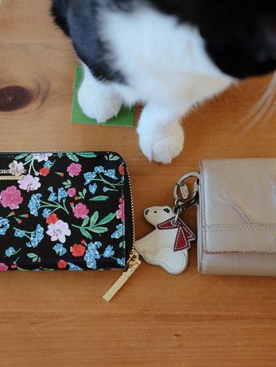 何年かぶりにお財布を新調。風水的にもよいものを…