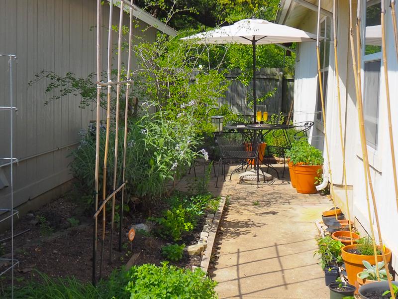 大好きなお庭
