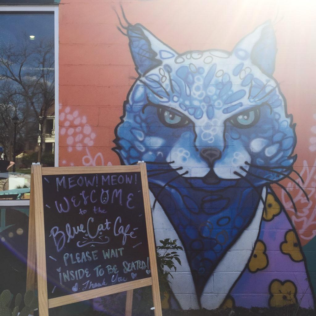 猫カフェ入口