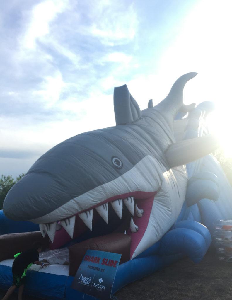 サメのウォータースライドも