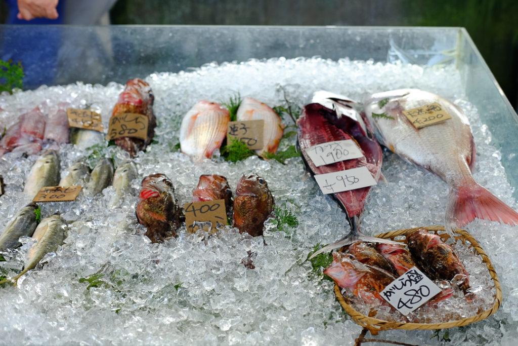 新鮮なお魚たち
