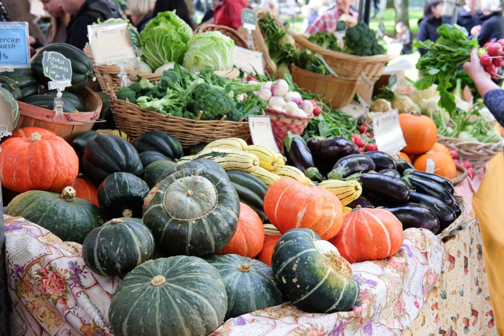色とりどりのお野菜