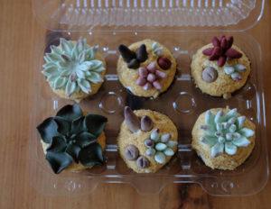 多肉植物カップケーキ