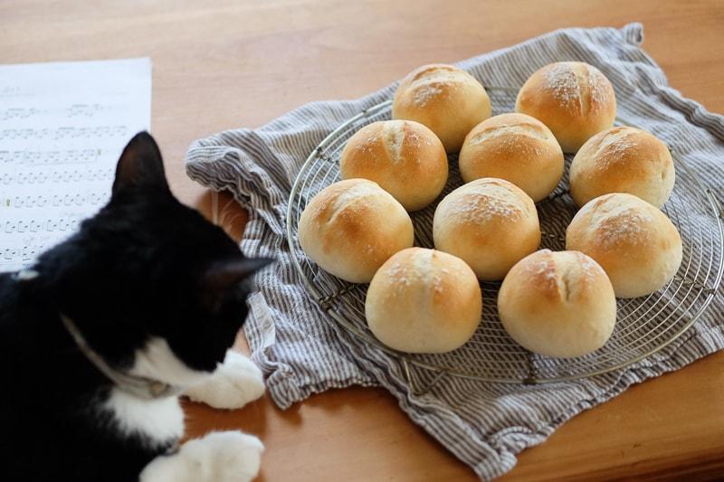 パンの見張り番