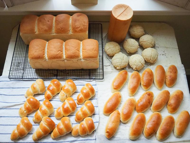 今週のパンたち